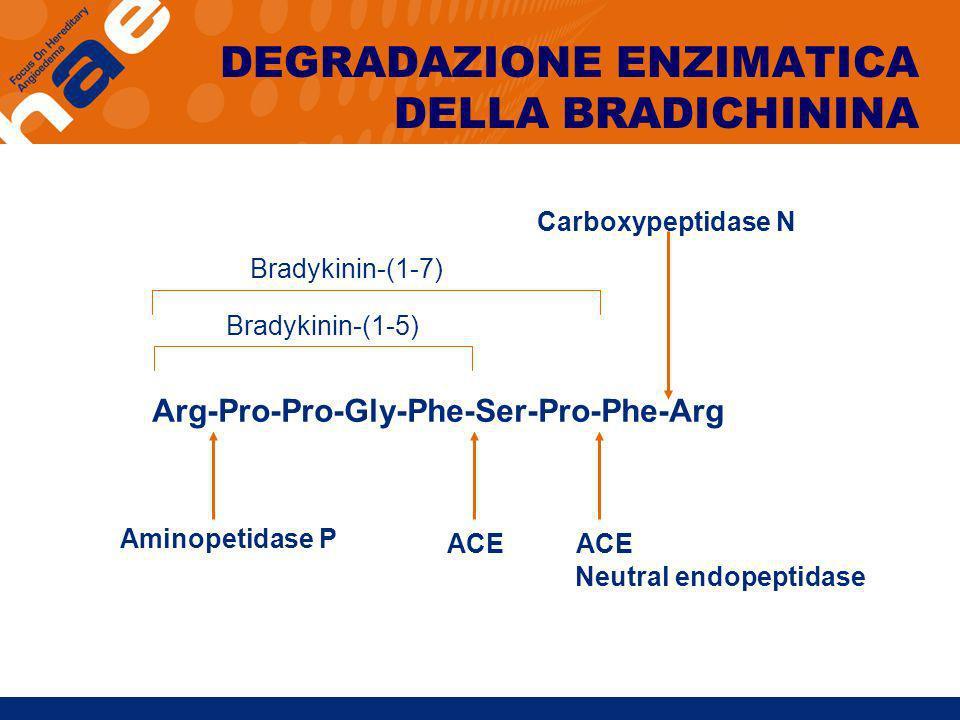 Arg-Pro-Pro-Gly-Phe-Ser-Pro-Phe-Arg Bradykinin-(1-5) Bradykinin-(1-7) Aminopetidase P ACE Neutral endopeptidase Carboxypeptidase N DEGRADAZIONE ENZIMA