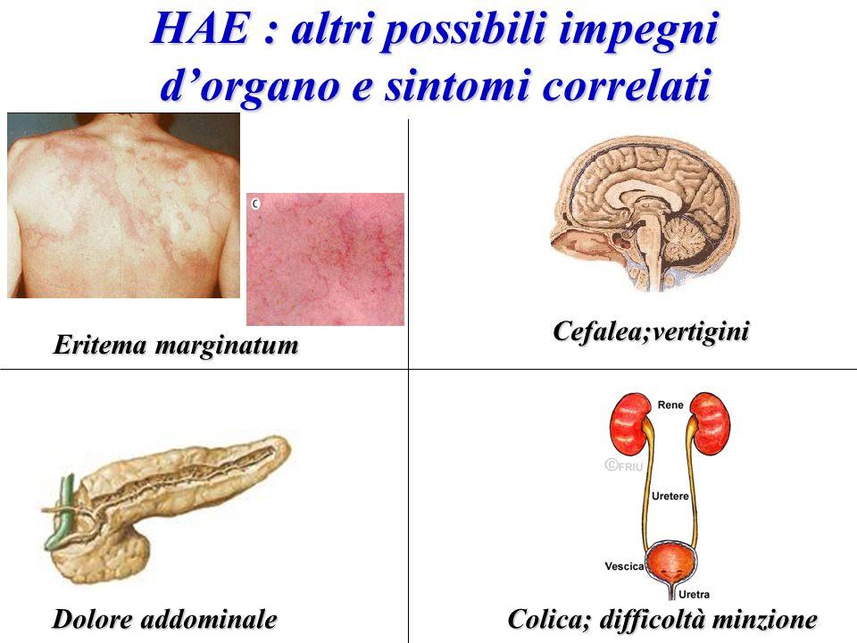 HAE : altri possibili impegni dorgano e sintomi correlati Cefalea;vertigini Colica; difficoltà minzione Dolore addominale Eritema marginatum