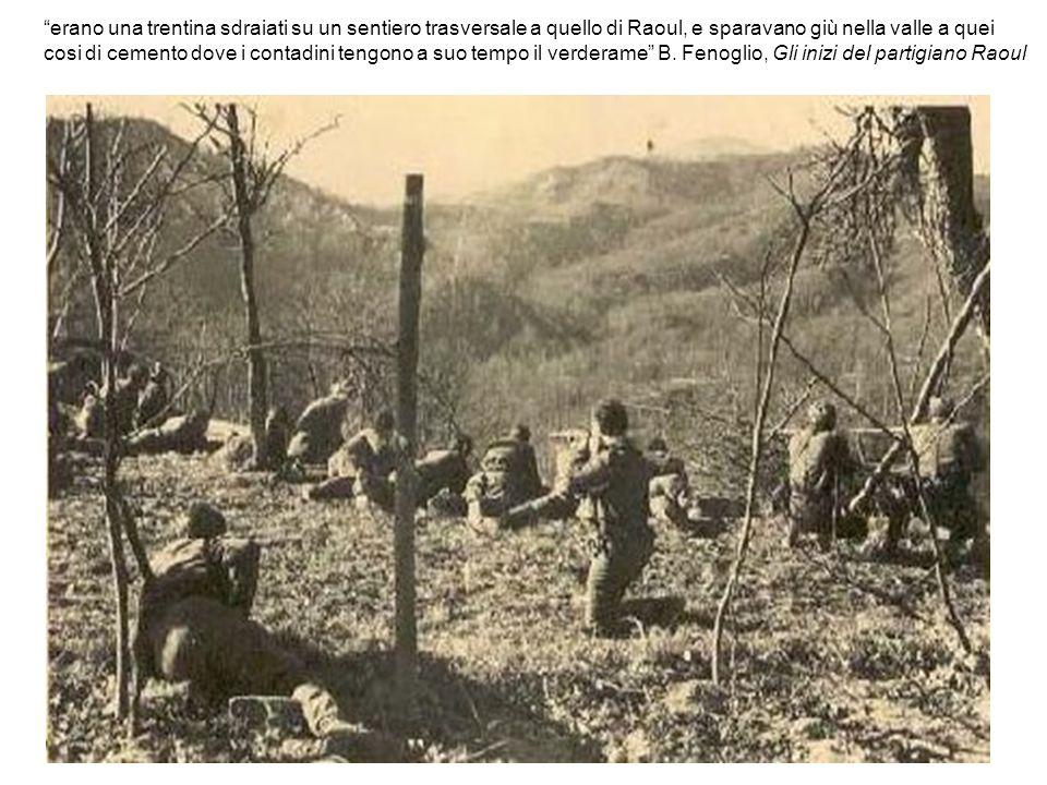 erano una trentina sdraiati su un sentiero trasversale a quello di Raoul, e sparavano giù nella valle a quei cosi di cemento dove i contadini tengono