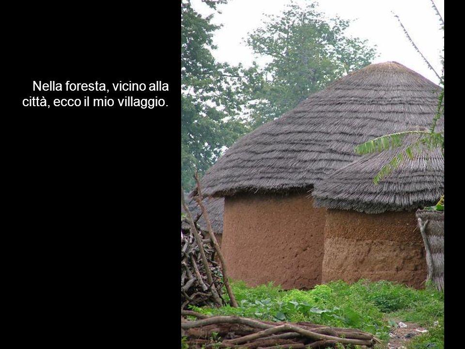 Nella foresta, vicino alla città, ecco il mio villaggio.