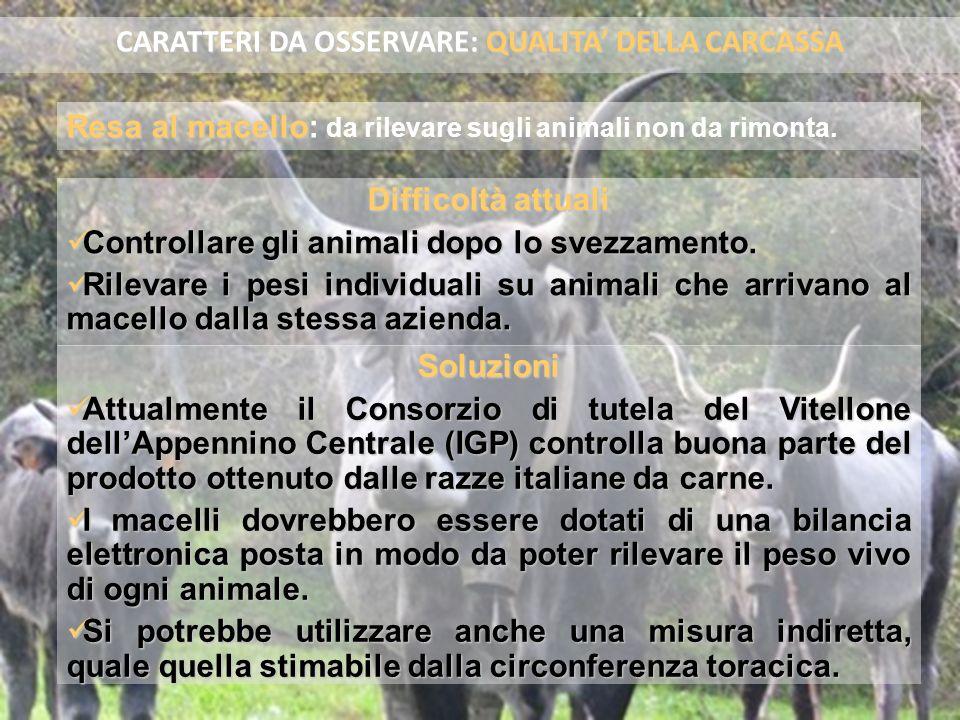 Problema Non si dispone della valutazione SEUROP per tutti gli animali.