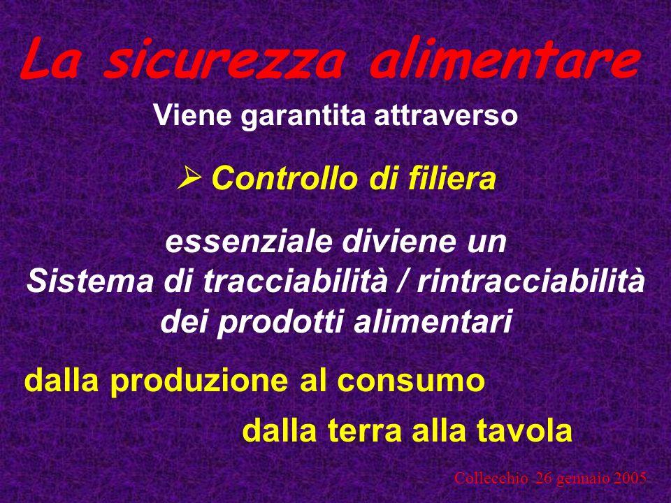 Collecchio 26 gennaio 2005 Strumenti Autocontrollo Controllo ufficiale