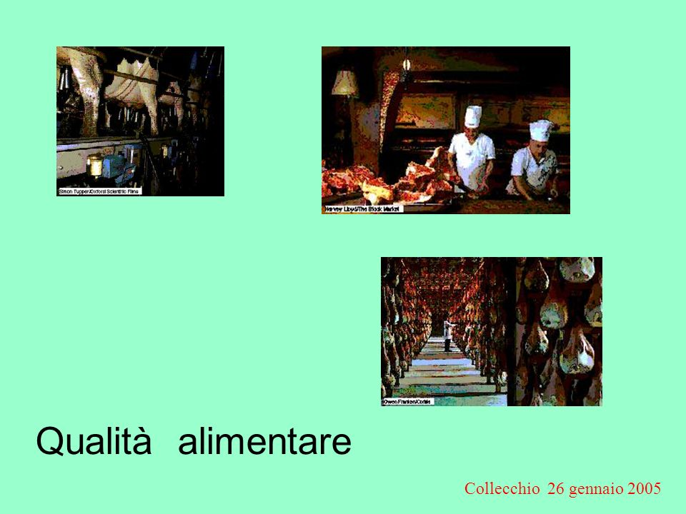 Collecchio 26 gennaio 2005 Obiettivi della normativa CE Alto livello di Sicurezza alimentare Garanzie per la salute degli animali Libera circolazione delle merci Benessere animale Protezione dellambiente