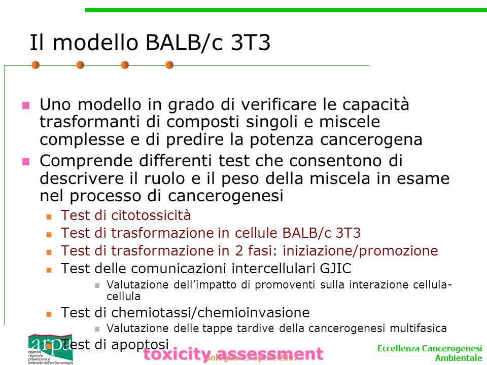 Eccellenza Cancerogenesi Ambientale Bologna 13 aprile 2007 Il modello BALB/c 3T3 Uno modello in grado di verificare le capacità trasformanti di compos