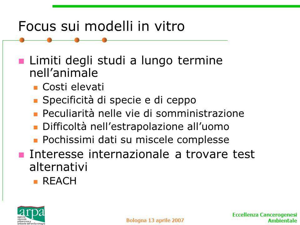 Eccellenza Cancerogenesi Ambientale Bologna 13 aprile 2007 Focus sui modelli in vitro Limiti degli studi a lungo termine nellanimale Costi elevati Spe