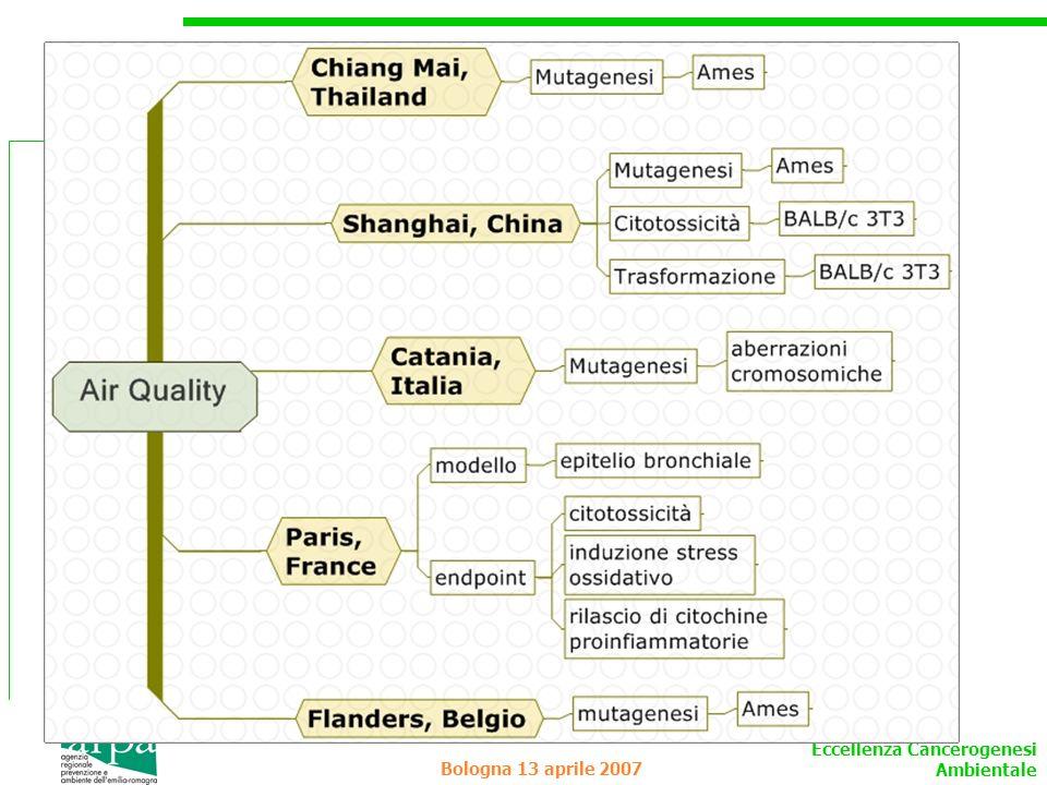 Eccellenza Cancerogenesi Ambientale Bologna 13 aprile 2007 Dati di letteratura