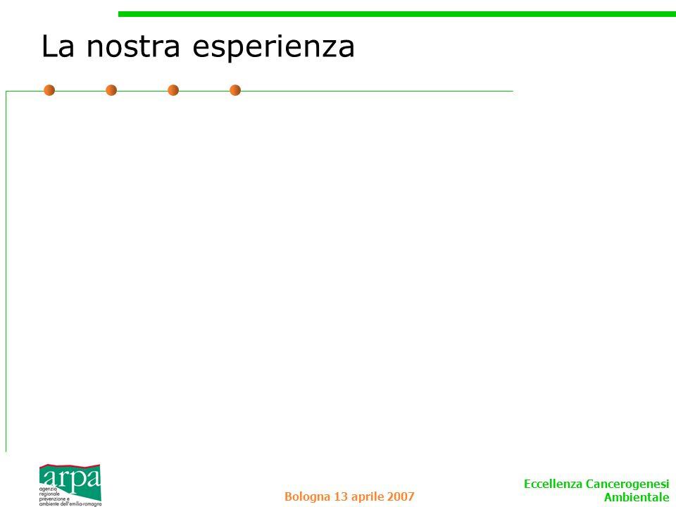 Eccellenza Cancerogenesi Ambientale Bologna 13 aprile 2007 La nostra esperienza