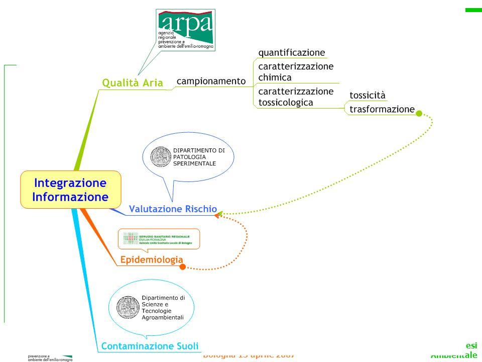 Eccellenza Cancerogenesi Ambientale Bologna 13 aprile 2007