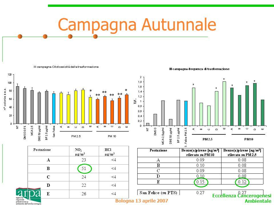 Eccellenza Cancerogenesi Ambientale Bologna 13 aprile 2007 Campagna Autunnale PostazioneNO 2 µg/m 3 HCl µg/m 3 A23<4 B51<4 C24<4 D22<4 E26<4