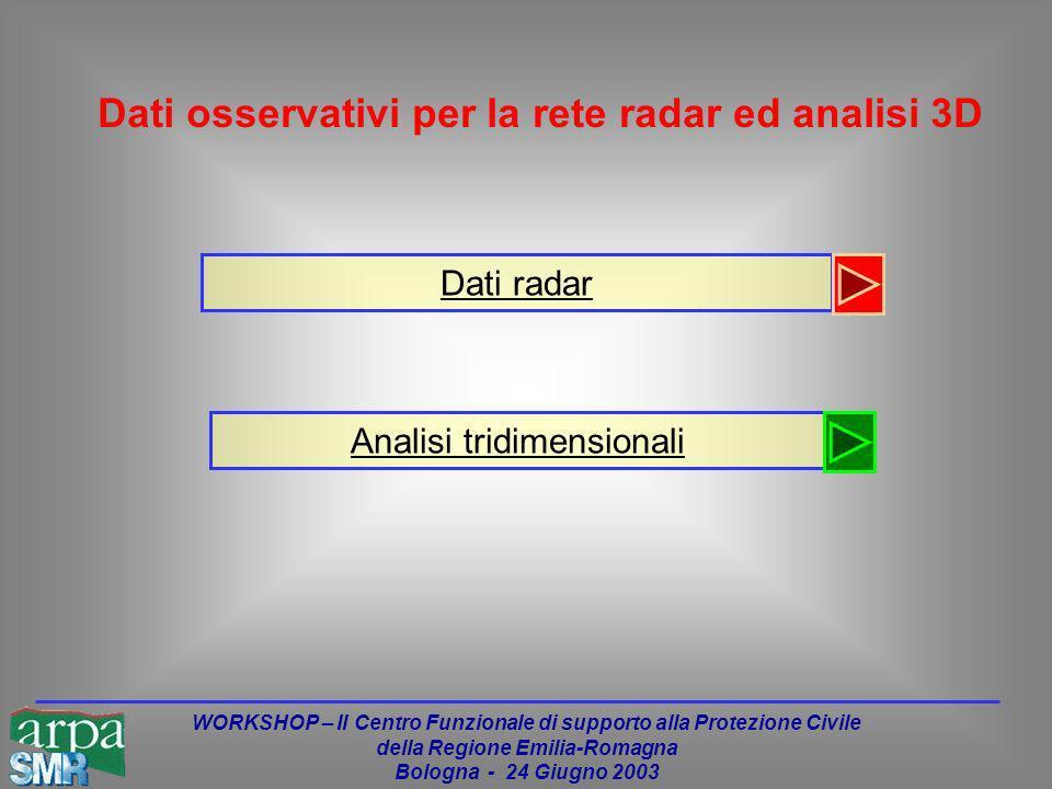 WORKSHOP – Il Centro Funzionale di supporto alla Protezione Civile della Regione Emilia-Romagna Bologna - 24 Giugno 2003 Dati radar Analisi tridimensionali Dati osservativi per la rete radar ed analisi 3D