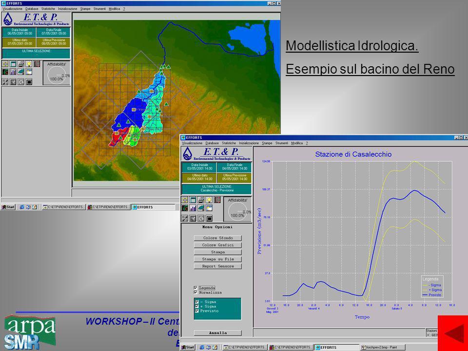 WORKSHOP – Il Centro Funzionale di supporto alla Protezione Civile della Regione Emilia-Romagna Bologna - 24 Giugno 2003 Modellistica Idrologica.