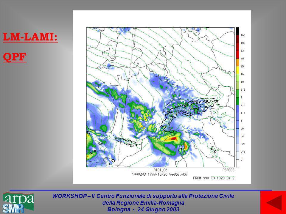 WORKSHOP – Il Centro Funzionale di supporto alla Protezione Civile della Regione Emilia-Romagna Bologna - 24 Giugno 2003 LM-LAMI: QPF