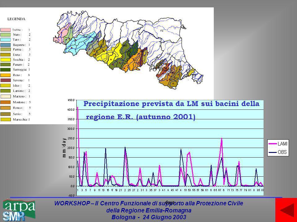 WORKSHOP – Il Centro Funzionale di supporto alla Protezione Civile della Regione Emilia-Romagna Bologna - 24 Giugno 2003 PO Valley Precipitazione prevista da LM sui bacini della regione E.R.
