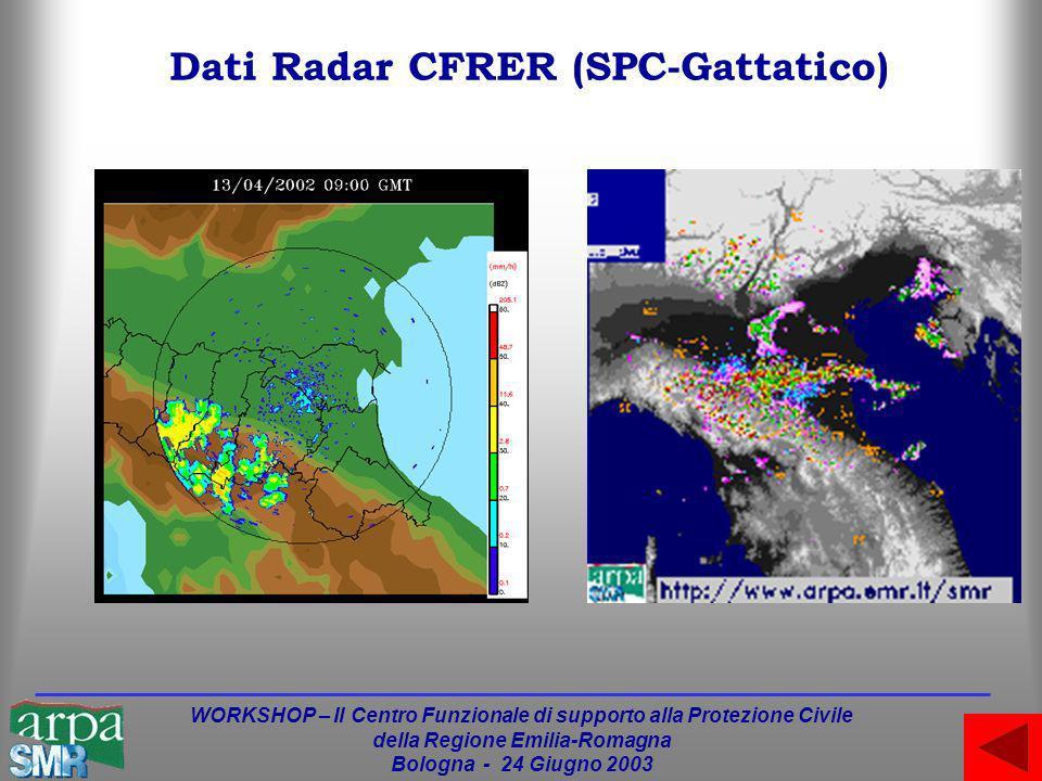 WORKSHOP – Il Centro Funzionale di supporto alla Protezione Civile della Regione Emilia-Romagna Bologna - 24 Giugno 2003 Dati Radar CFRER (SPC-Gattatico)
