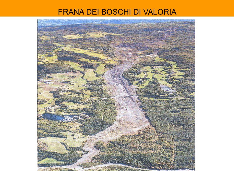 FRANA DEI BOSCHI DI VALORIA