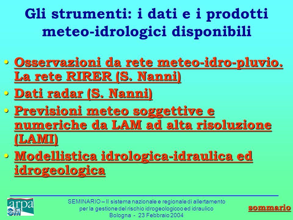 SEMINARIO – Il sistema nazionale e regionale di allertamento per la gestione del rischio idrogeologicoo ed idraulico Bologna - 23 Febbraio 2004 Gli st