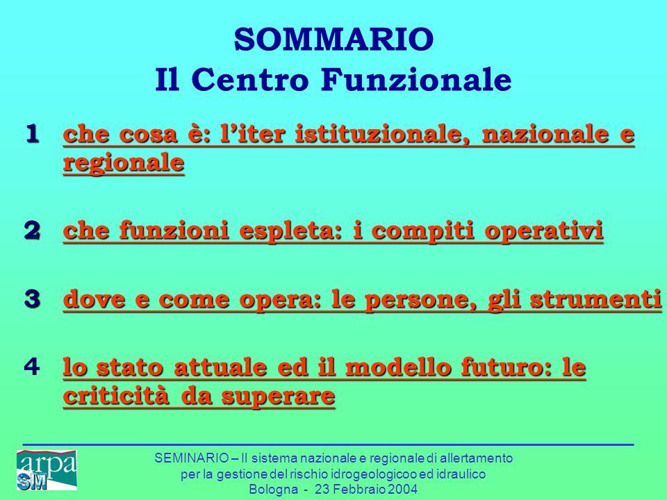 SEMINARIO – Il sistema nazionale e regionale di allertamento per la gestione del rischio idrogeologicoo ed idraulico Bologna - 23 Febbraio 2004 SOMMAR