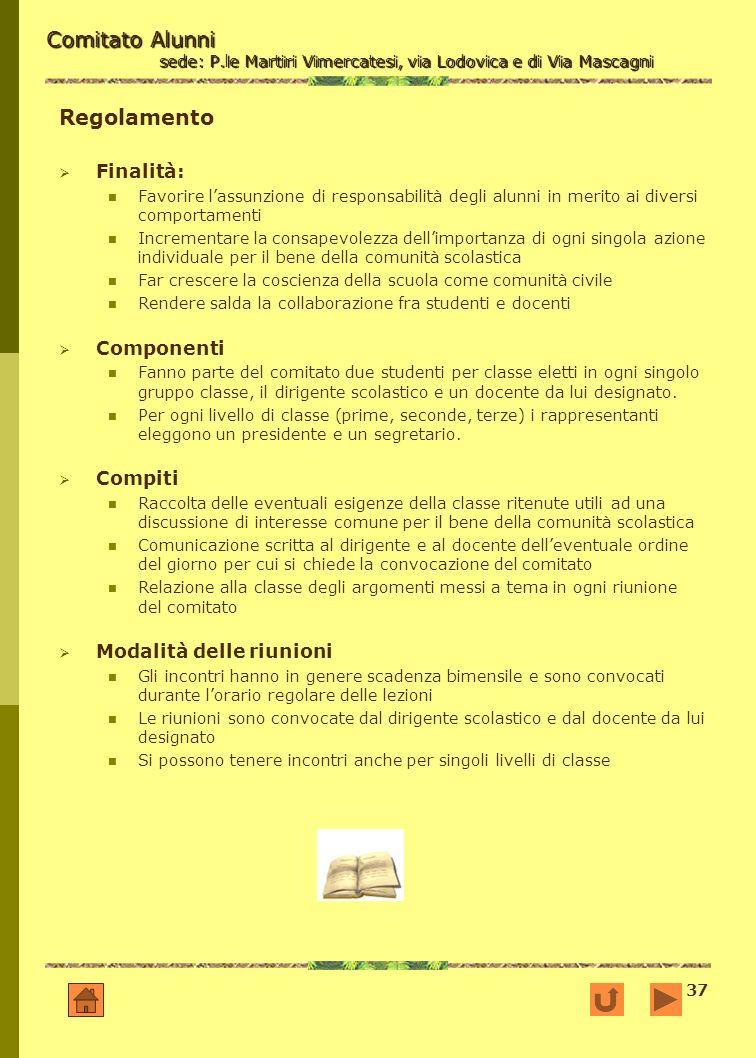 37 Comitato Alunni sede: P.le Martiri Vimercatesi, via Lodovica e di Via Mascagni Regolamento Finalità: Favorire lassunzione di responsabilità degli a