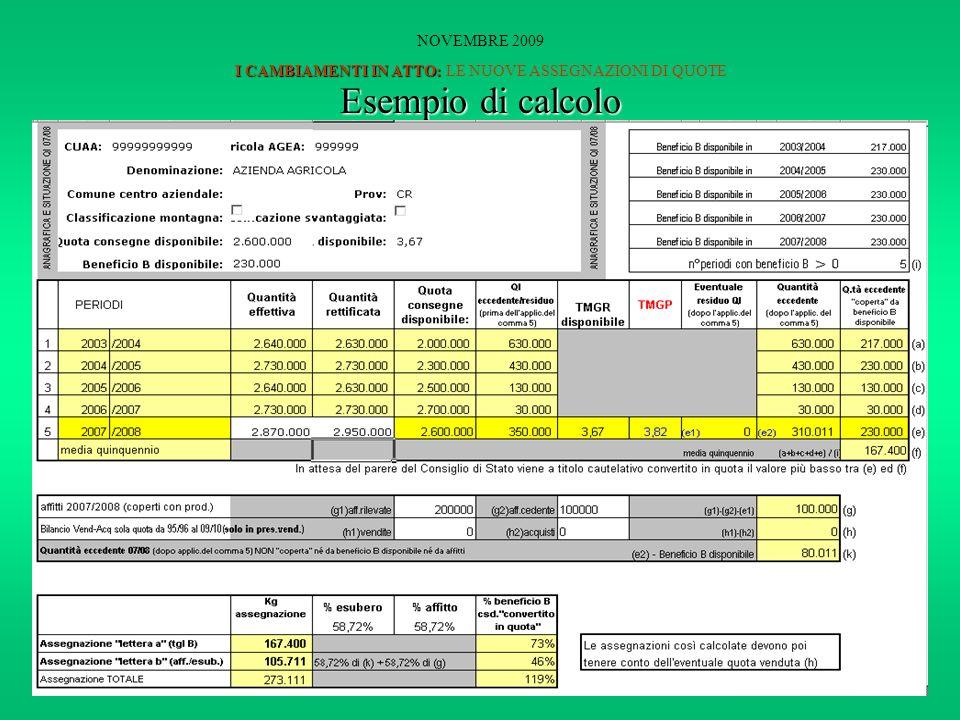 I CAMBIAMENTI IN ATTO: NOVEMBRE 2009 I CAMBIAMENTI IN ATTO: LE NUOVE ASSEGNAZIONI DI QUOTE Esempio di calcolo
