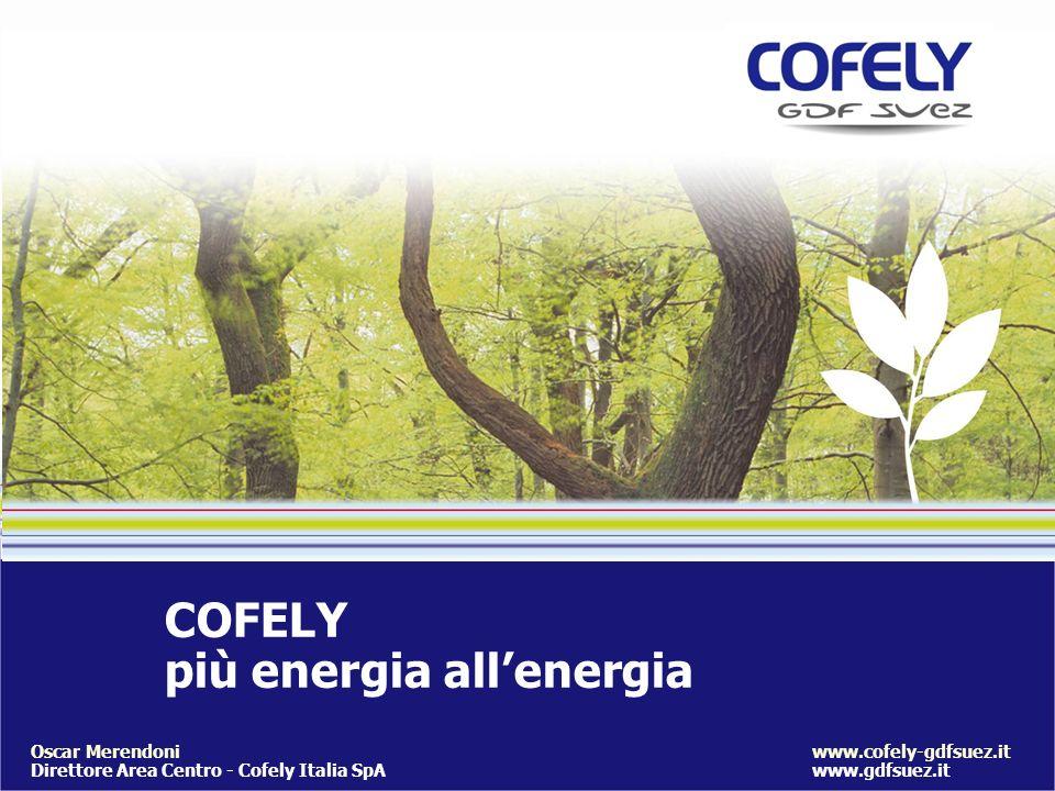 COFELY più energia allenergia www.cofely-gdfsuez.it www.gdfsuez.it Oscar Merendoni Direttore Area Centro - Cofely Italia SpA