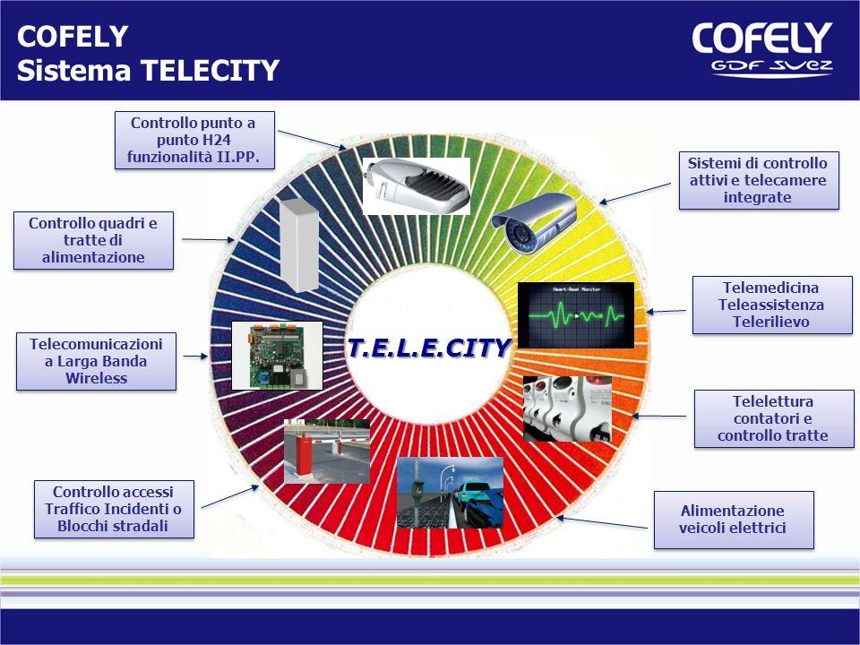 Sistemi di controllo attivi e telecamere integrate Telemedicina Teleassistenza Telerilievo Telemedicina Teleassistenza Telerilievo Telelettura contato