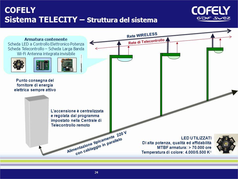 24 Rete di Telecontrollo Rete WIRELESS Alimentazione tipicamente 220 V con cablaggio in parallelo Punto consegna del fornitore di energia elettrica se