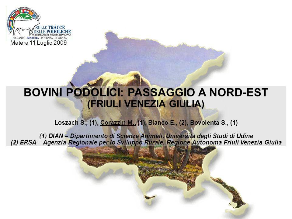BOVINI PODOLICI: PASSAGGIO A NORD-EST (FRIULI VENEZIA GIULIA) Loszach S., (1), Corazzin M., (1), Bianco E., (2), Bovolenta S., (1) (1) DIAN – Dipartim