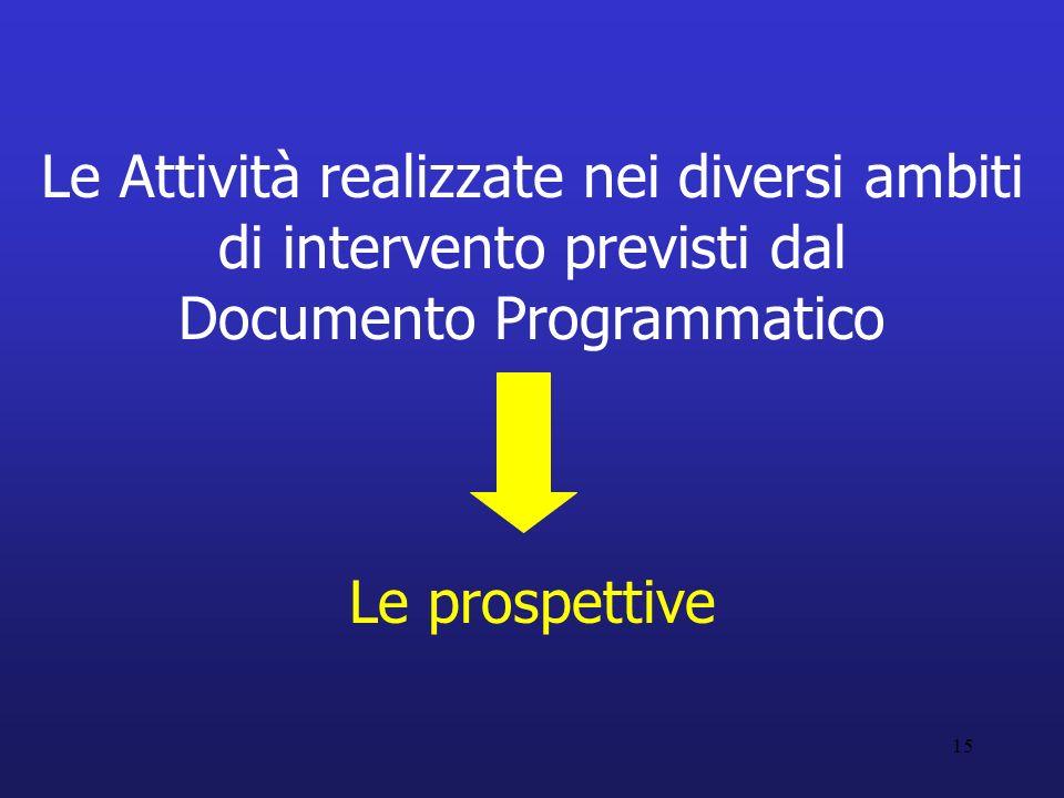 15 Le Attività realizzate nei diversi ambiti di intervento previsti dal Documento Programmatico Le prospettive