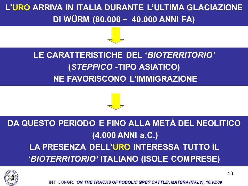 13 LURO ARRIVA IN ITALIA DURANTE LULTIMA GLACIAZIONE DI WÜRM (80.000 ÷ 40.000 ANNI FA) DA QUESTO PERIODO E FINO ALLA METÀ DEL NEOLITICO (4.000 ANNI a.