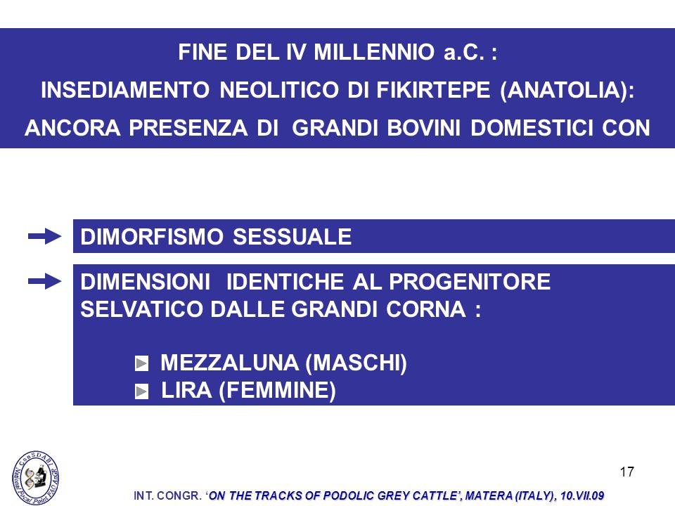 17 DIMORFISMO SESSUALE FINE DEL IV MILLENNIO a.C. : INSEDIAMENTO NEOLITICO DI FIKIRTEPE (ANATOLIA): ANCORA PRESENZA DI GRANDI BOVINI DOMESTICI CON DIM