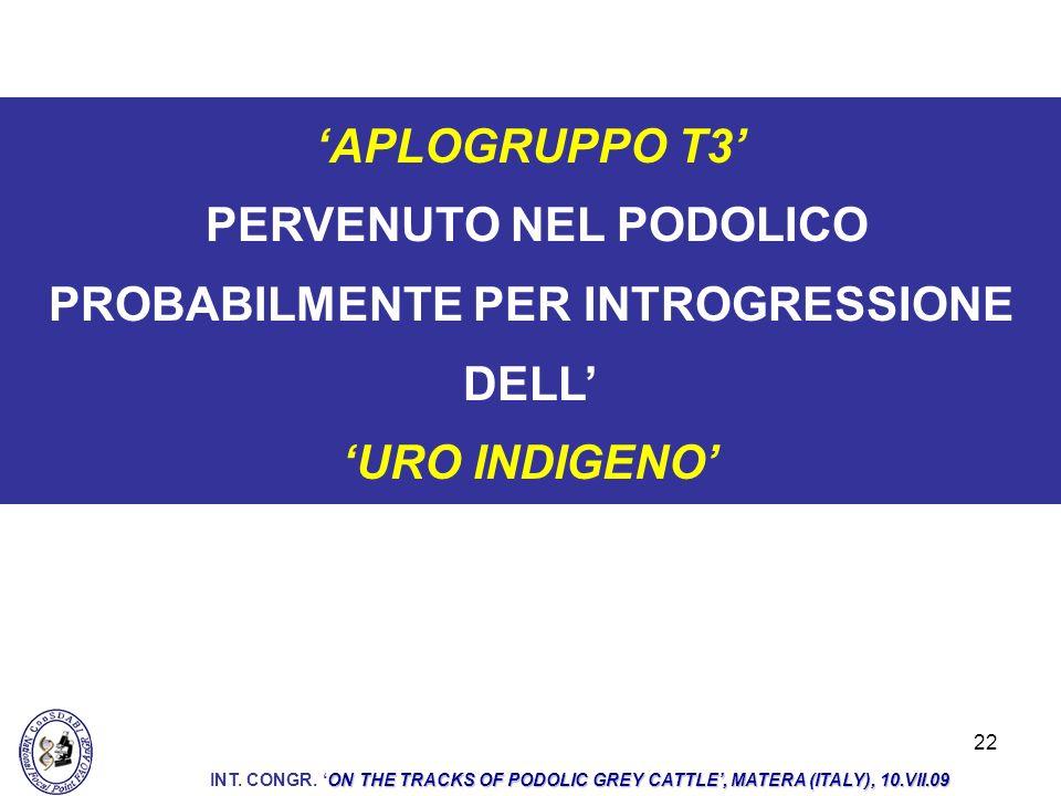 22 APLOGRUPPO T3 PERVENUTO NEL PODOLICO PROBABILMENTE PER INTROGRESSIONE DELL URO INDIGENO ON THE TRACKS OF PODOLIC GREY CATTLE, MATERA (ITALY), 10.VII.09 INT.