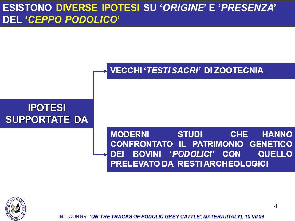 25 LA CAPACITÀ AL COSTRUTTIVISMO DEL BOVINO PODOLICO È FUNZIONE DELLE SUE RISERVE DI VARIABILITÀ POTENZIALE CHE SI ESPRIMONO IN UN DETERMINATO CONTESTO MICROAMBIENTALE ON THE TRACKS OF PODOLIC GREY CATTLE, MATERA (ITALY), 10.VII.09 INT.