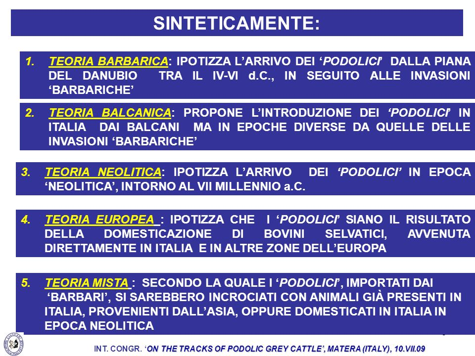 6 IL BOVINO PODOLICO SAREBBE DERIVATO DA BOVINI MACROCERI (A CORNA GRANDI) TEORIA MAGGIORMENTE ATTENDIBILE: LA NEOLITICA PRESENTI NEL MEDITERRANEO A PARTIRE DAL NEOLITICO (CIANI E MATASSINO, 2001) ON THE TRACKS OF PODOLIC GREY CATTLE, MATERA (ITALY), 10.VII.09 INT.