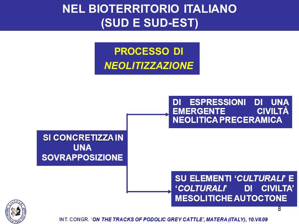 9 IN QUESTO CONTESTO CULTURALE E COLTURALE IN CONTINUA EVOLUZIONE ORIGINANO LE POPOLAZIONI BOVINE GRIGIE AUTOCTONE ITALIANE DI CUI È STATO POSSIBILE IDENTIFICARE LA PLAUSIBILE FILOGENESI ON THE TRACKS OF PODOLIC GREY CATTLE, MATERA (ITALY), 10.VII.09 INT.