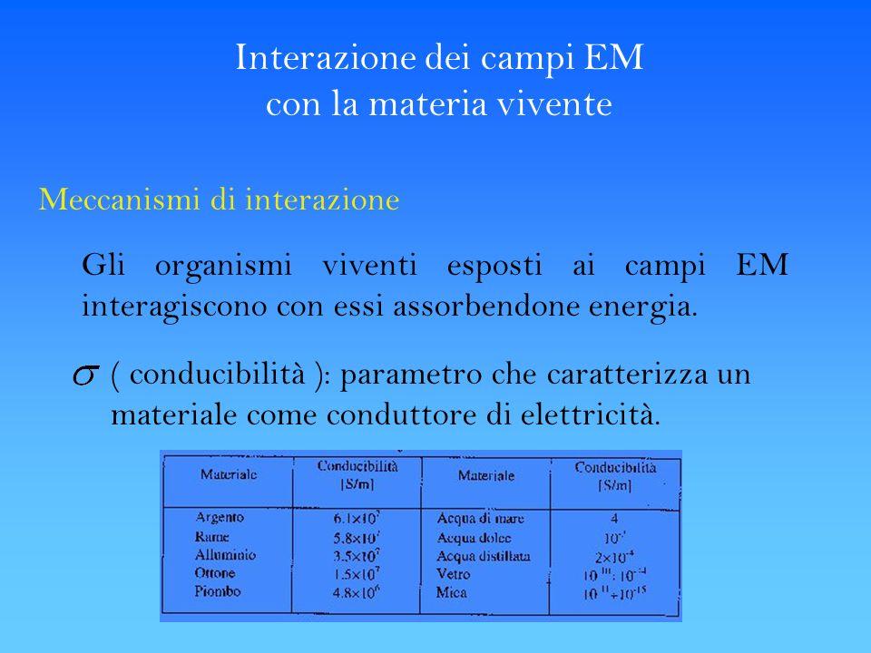 Interazione dei campi EM con la materia vivente Meccanismi di interazione Gli organismi viventi esposti ai campi EM interagiscono con essi assorbendon