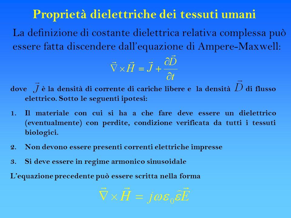 Proprietà dielettriche dei tessuti umani La definizione di costante dielettrica relativa complessa può essere fatta discendere dallequazione di Ampere