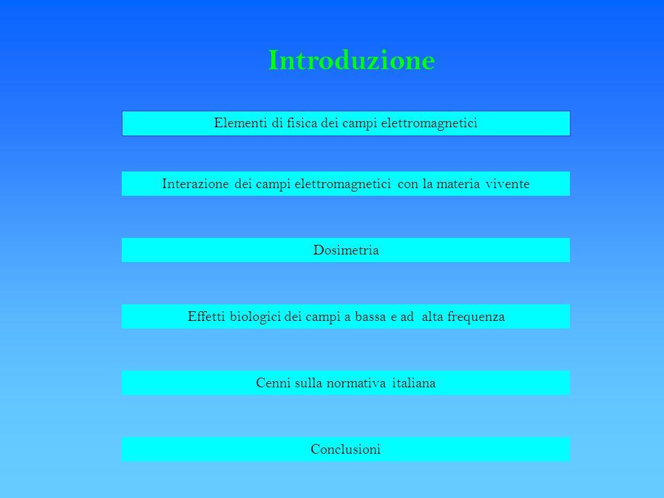 Introduzione Elementi di fisica dei campi elettromagnetici Interazione dei campi elettromagnetici con la materia vivente Dosimetria Effetti biologici