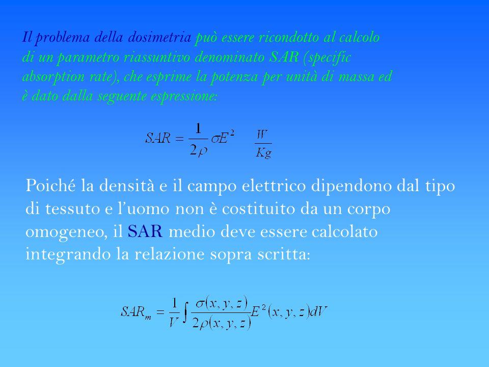 Poiché la densità e il campo elettrico dipendono dal tipo di tessuto e luomo non è costituito da un corpo omogeneo, il SAR medio deve essere calcolato