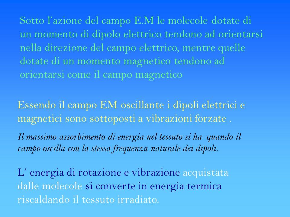 Sotto lazione del campo E.M le molecole dotate di un momento di dipolo elettrico tendono ad orientarsi nella direzione del campo elettrico, mentre que