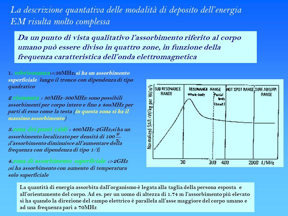 La descrizione quantativa delle modalità di deposito dellenergia EM risulta molto complessa Da un punto di vista qualitativo lassorbimento riferito al