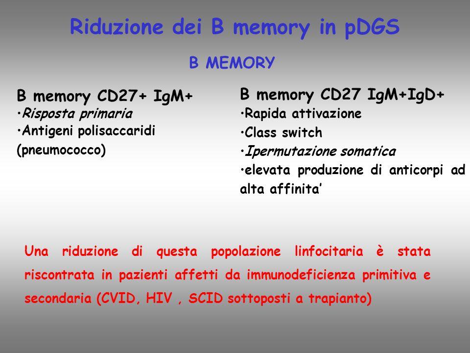 B MEMORY B memory CD27+ IgM+ Risposta primaria Antigeni polisaccaridi (pneumococco) B memory CD27 IgM+IgD+ Rapida attivazione Class switch Ipermutazione somatica elevata produzione di anticorpi ad alta affinita Una riduzione di questa popolazione linfocitaria è stata riscontrata in pazienti affetti da immunodeficienza primitiva e secondaria (CVID, HIV, SCID sottoposti a trapianto) Riduzione dei B memory in pDGS