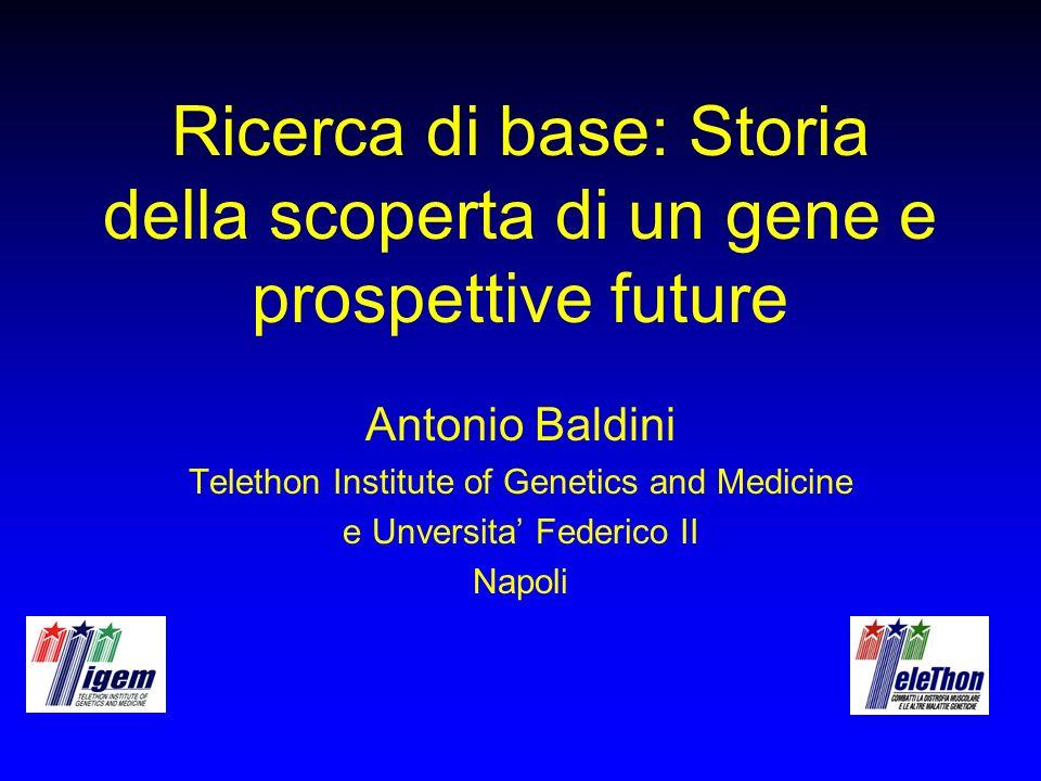 Obiettivi della ricerca di base Diagnostica molecolare Identificazione del gene che causa la malattia Studi funzionali Sviluppo di terapie (convenzionali o geniche)