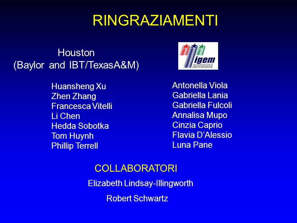 RINGRAZIAMENTI COLLABORATORI Elizabeth Lindsay-Illingworth Robert Schwartz Houston (Baylor and IBT/TexasA&M) Huansheng Xu Zhen Zhang Francesca Vitelli