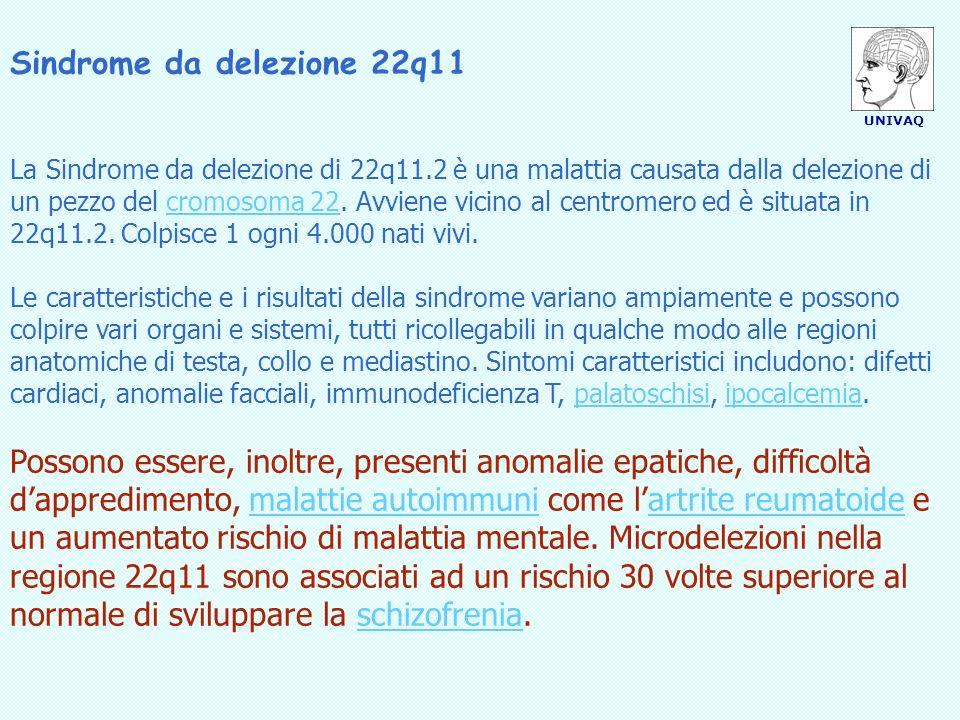 UNIVAQ Sindrome da delezione 22q11 Sintomi I sintomi della delezione di 22q11.2 sono così vari, da essere stati descritti, raggruppati, in molte sindromi.