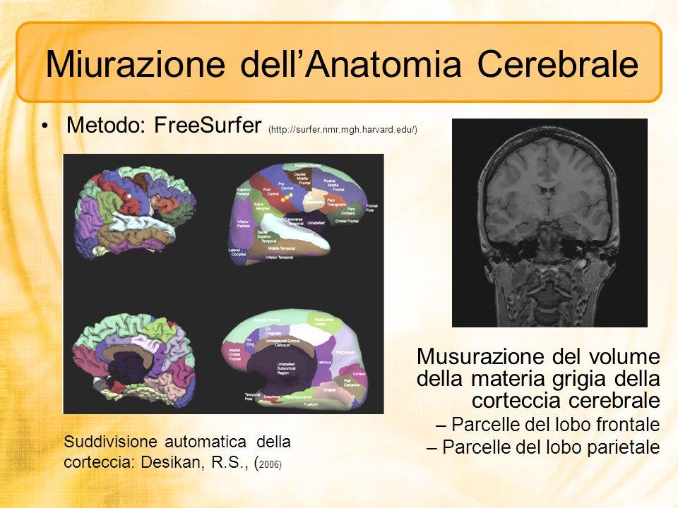 Miurazione dellAnatomia Cerebrale Metodo: FreeSurfer (http://surfer.nmr.mgh.harvard.edu/) Suddivisione automatica della corteccia: Desikan, R.S., ( 20