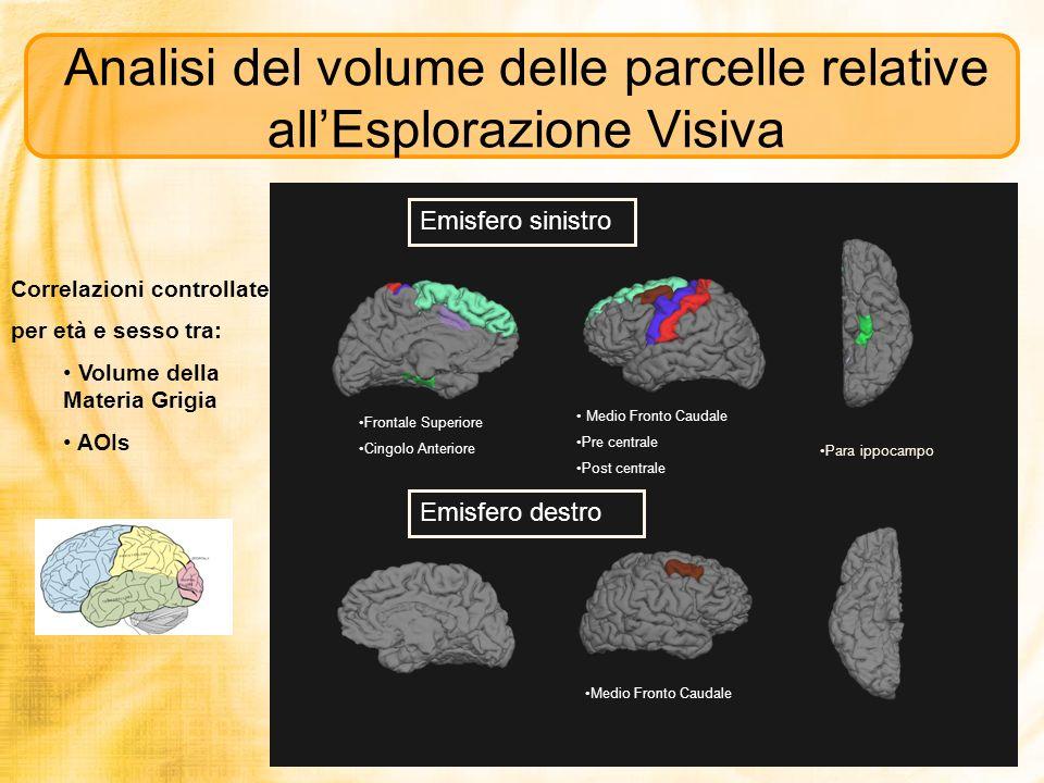 Analisi del volume delle parcelle relative allEsplorazione Visiva Para ippocampo Frontale Superiore Cingolo Anteriore Medio Fronto Caudale Pre central