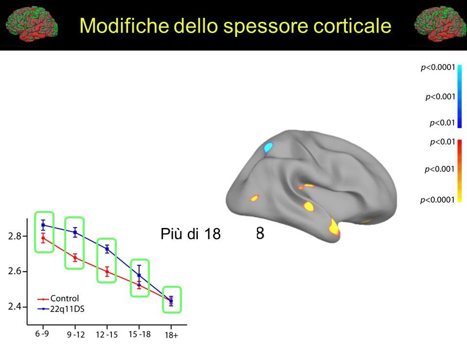 Modifiche dello spessore corticale Più di 18