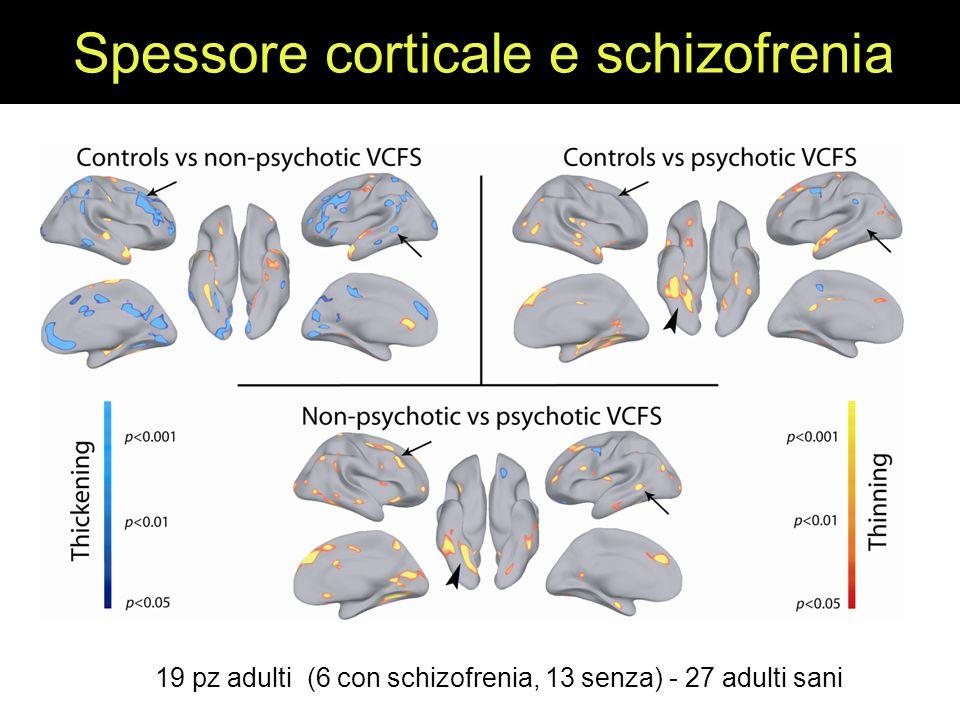 Spessore corticale e schizofrenia 19 pz adulti (6 con schizofrenia, 13 senza) - 27 adulti sani