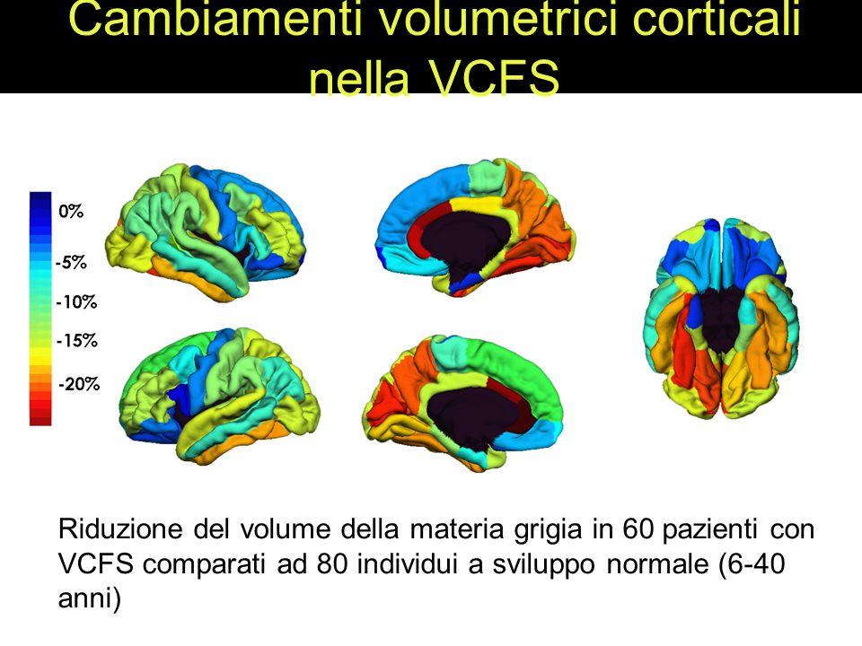 Cambiamenti volumetrici corticali nella VCFS Riduzione del volume della materia grigia in 60 pazienti con VCFS comparati ad 80 individui a sviluppo normale (6-40 anni)