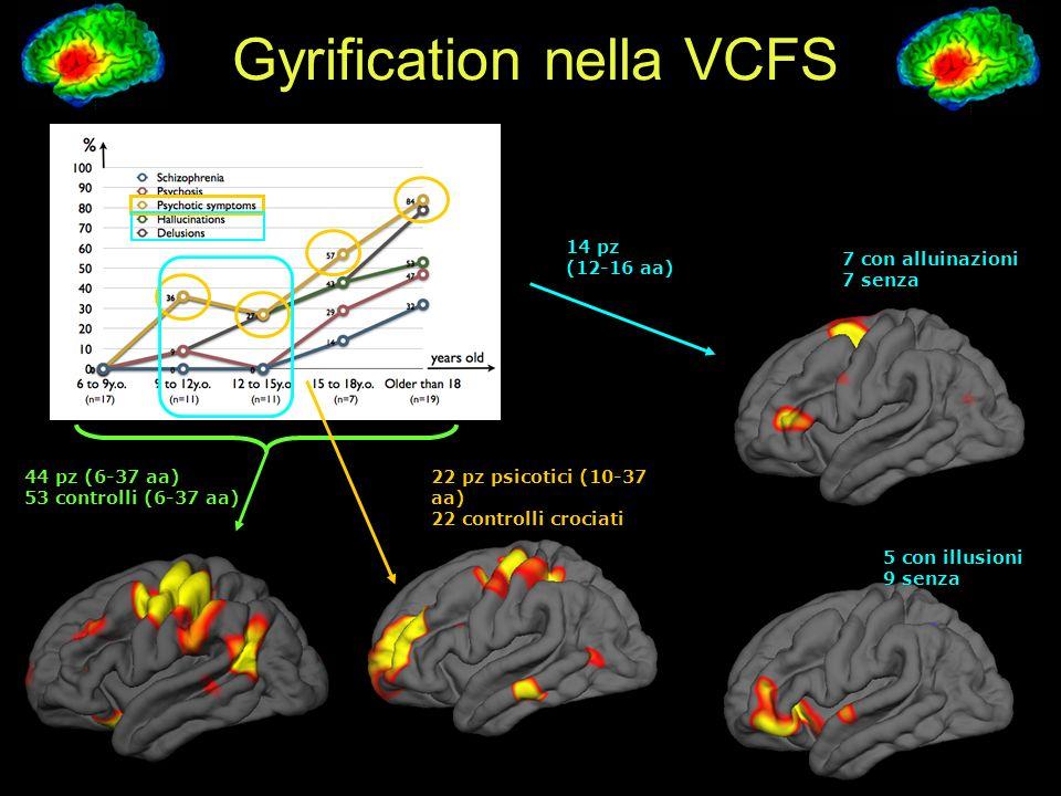 Gyrification nella VCFS 44 pz (6-37 aa) 53 controlli (6-37 aa) 22 pz psicotici (10-37 aa) 22 controlli crociati 7 con alluinazioni 7 senza 5 con illusioni 9 senza 14 pz (12-16 aa)